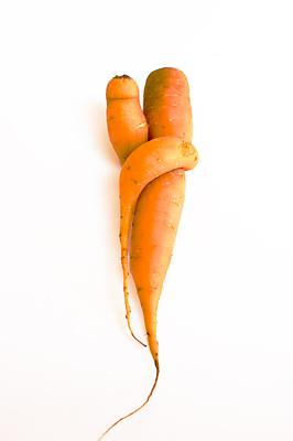 https://www.mayophoto.net/smallthings/Carrot_Love_1.jpg